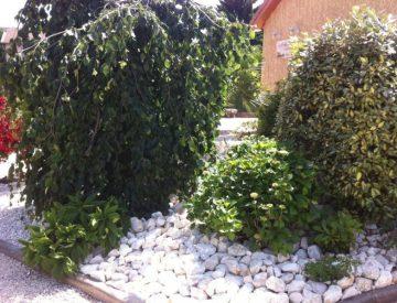 Jardins minéral